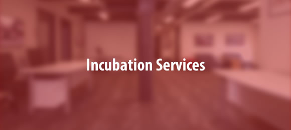 incubation services